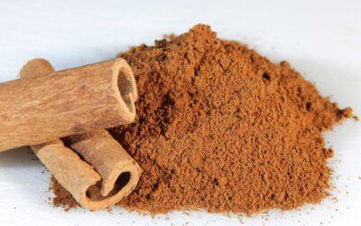 Ceylon Cinnamon versus Cassia Cinnamon